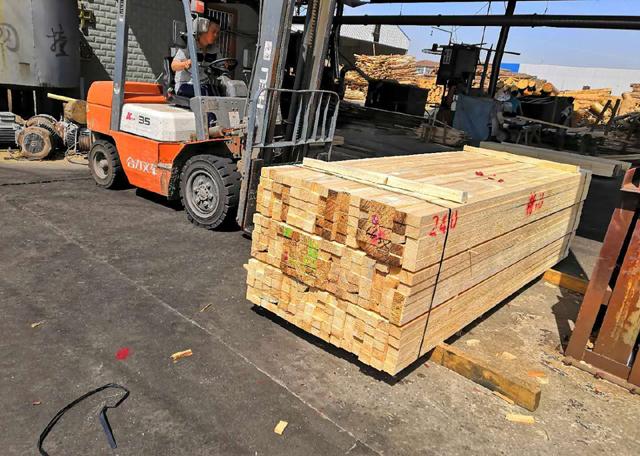 怎样保证建筑木方避免 蛀木虫害