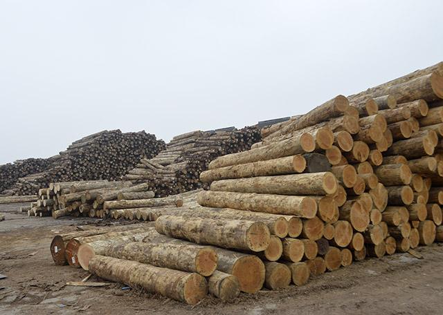 剖析建筑木方制作方式有哪些呢?