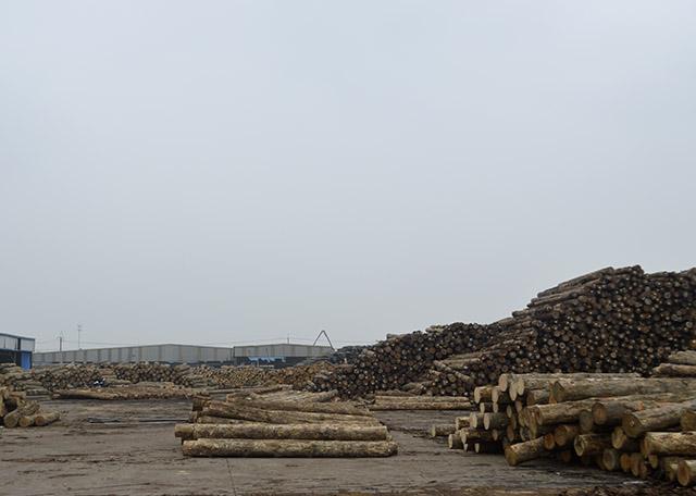 建筑木方长期性储放的伤害有什么?