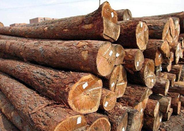 如何辨别是否实木板建筑木方