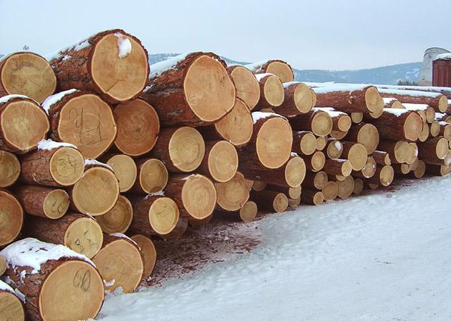 建筑木方的蒸制加工工艺是如何的?建筑木方应用全过程中的常见问题是啥